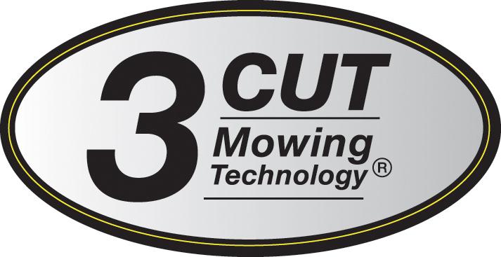 3 Cut
